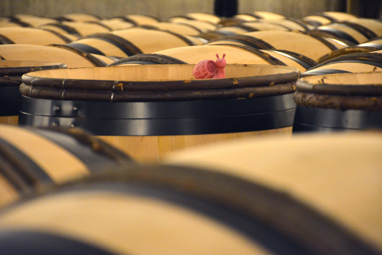 Les vins des Hospices de Beaune selon Anima Vinum