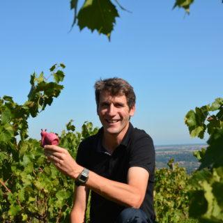 Olivier Coquard, faiseur de nouveaux Beaujolais