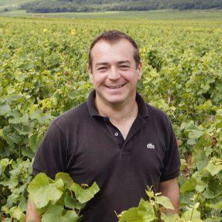 Peut-on faire face collectivement au changement climatique dans les vignes bourguignonnes ?