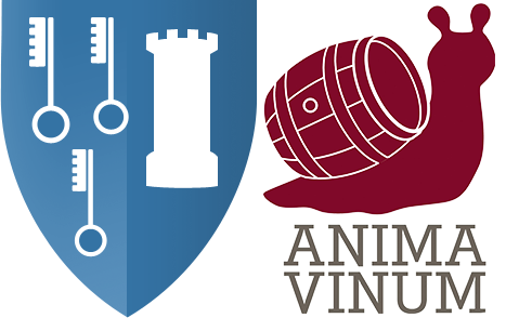 Hospices de Beaune selon Anima Vinum